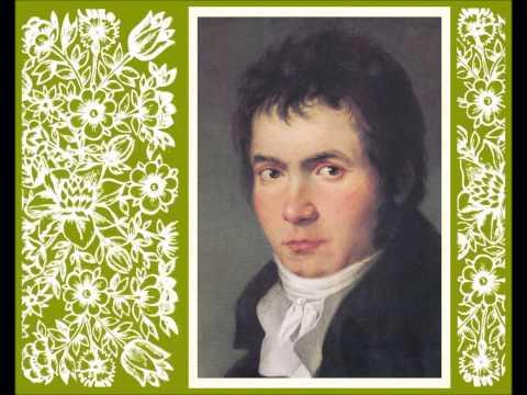 Hugo Steurer plays Beethoven - Piano Sonata No. 22