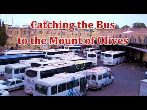 Bus Ride in East Jerusalem