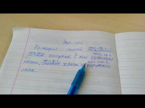 Домашнее задание по русскому языку