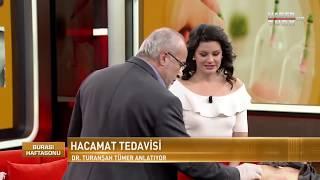 Habertürk TV Canlı yayında Sülük ve Hacamat uygulaması - Dr. Turanşah Tümer