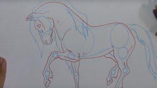 Como desenhar um cavalo/ How to draw a horse