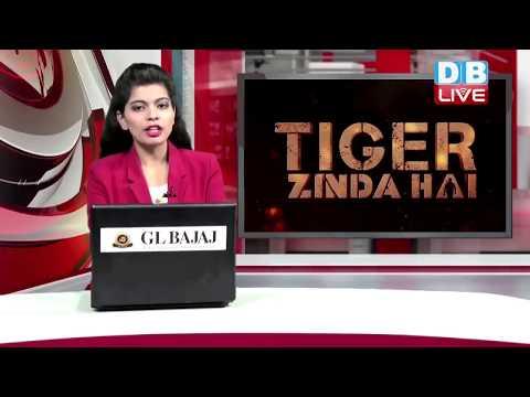 बॉक्स ऑफिस पर 'टाइगर जिंदा है' ने मचाया धमाल|#Tiger Zinda Hai Box Office Collection thumbnail