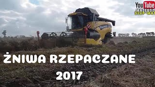 Żniwa rzepaczane na 2 nowe kombajny New Holland CX 6080 Engine Sound