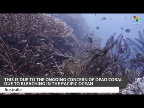 NASA to Map the Decline of Coral Reefs