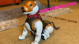 Sony Aibo Unboxing ERS1000 Chocolate Edition