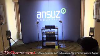 Raidho X1 Loudspeakers, Hegel Music System, Ansuz Acoustics,  Award winning sound