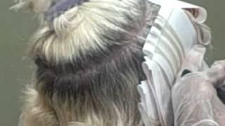 Insignia Salon  Hair Color (Lowlights)