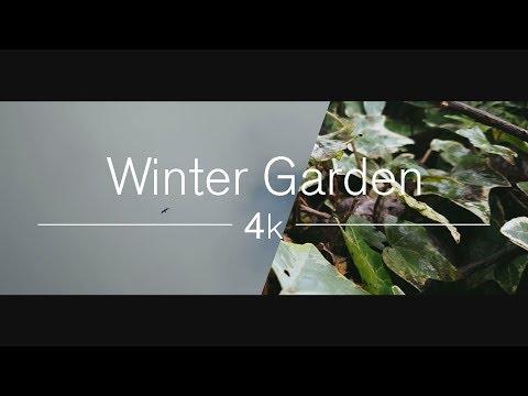 4K - Winter Garden | ZHIYUN Smooth Q SAMSUNG Galaxy S7 Edge Short Film