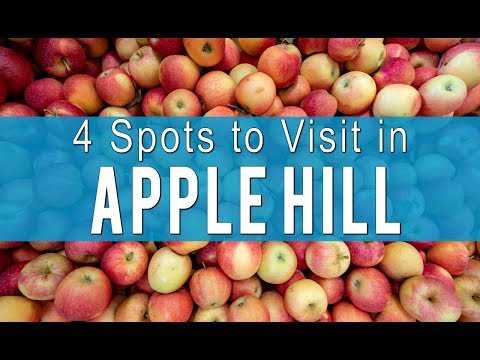 Apple Hill: 4 Ranches to Visit for Apple Picking and Donuts