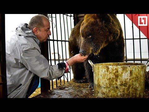 7 лет дружбы с медведицей