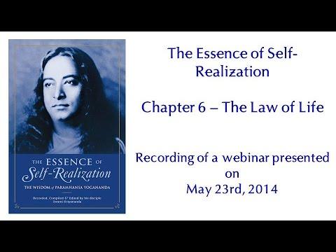 Essence of Self-Realization - Ch 11, Grace vs Self Effort