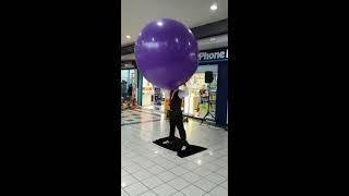 Video GIANT PURPLE BALLOON SHOW FOR KIDS OUTSIDE PHONE HOUSE KEEP WATCHING !! HAHAHA download MP3, 3GP, MP4, WEBM, AVI, FLV Oktober 2018