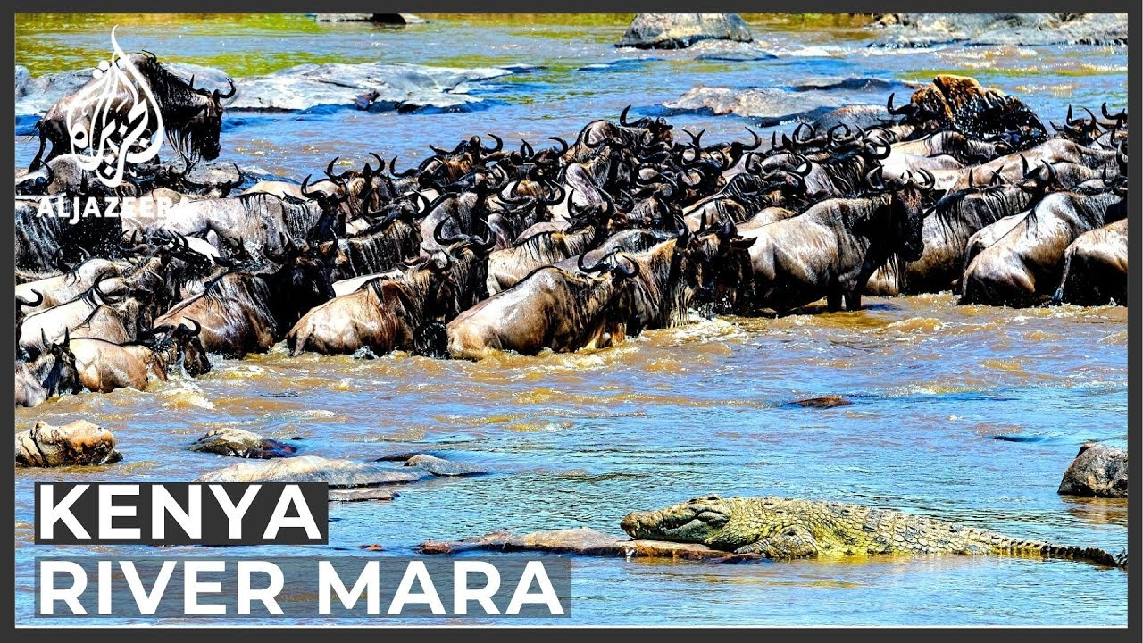Kenya's River Mara vulnerable to climate change