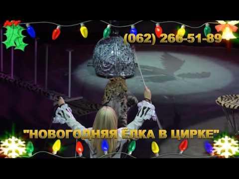 Новогодняя лка в цирке Космос