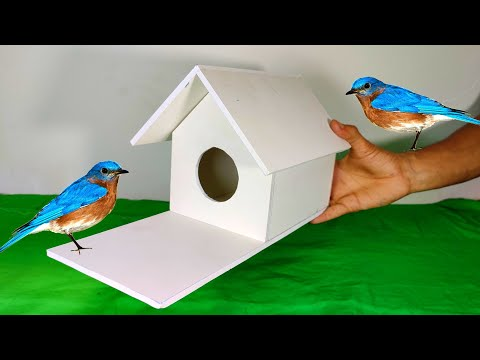 easy-bird-house-diy---build-the-easiest-and-simplest-bird-house-ever!!!!