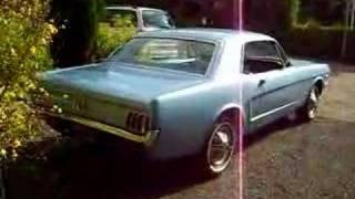 Mustang 21-05-08