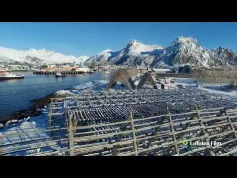 Travel to Lofoten Islands Norway? Take a look at this! Best of (HD)
