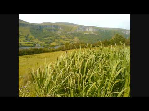 Blue Hills of Breffni - Daniel O