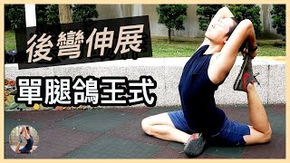 後彎瑜伽 | 單腿鴿王式 | 4種輔助動作 |  4 assistance exercises for one leg king pigeon