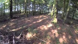 FPV Quadcopter Passing The Time