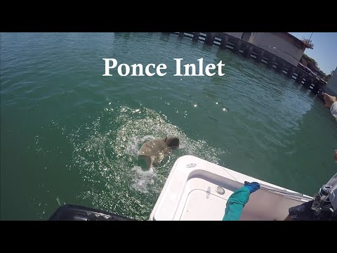 Fishing at Ponce Inlet