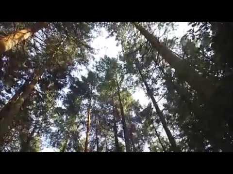 NORTHERN IRELAND | Travel Vlog #1