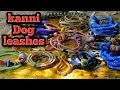 Kanni Dog Working Dogs Ropes And Walking Leashes