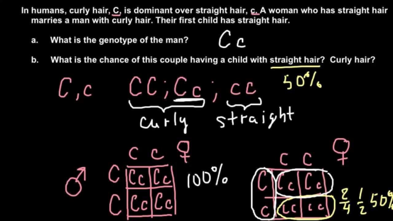 Solving Problems in Genetics