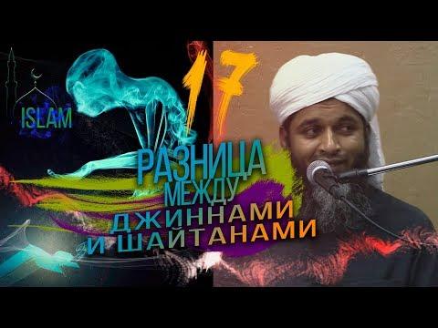 Разница между джиннами и шайтанами. Хасан Али #17