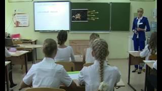 Урок русского языка, Крюкова Е. А., 2016