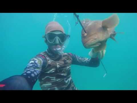 Spearfishing in Antigua Waters, homemade speargun (Aug 16,2017)