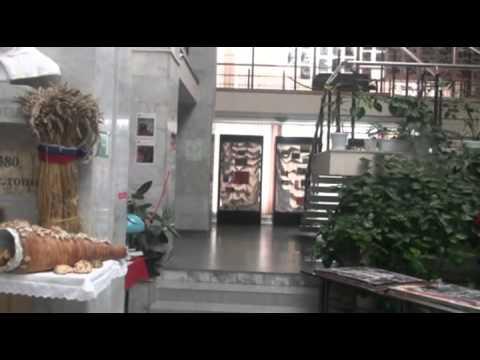 Тимашевск дом для престарелых деятельность марины почеваловой в доме престарелых в ямме