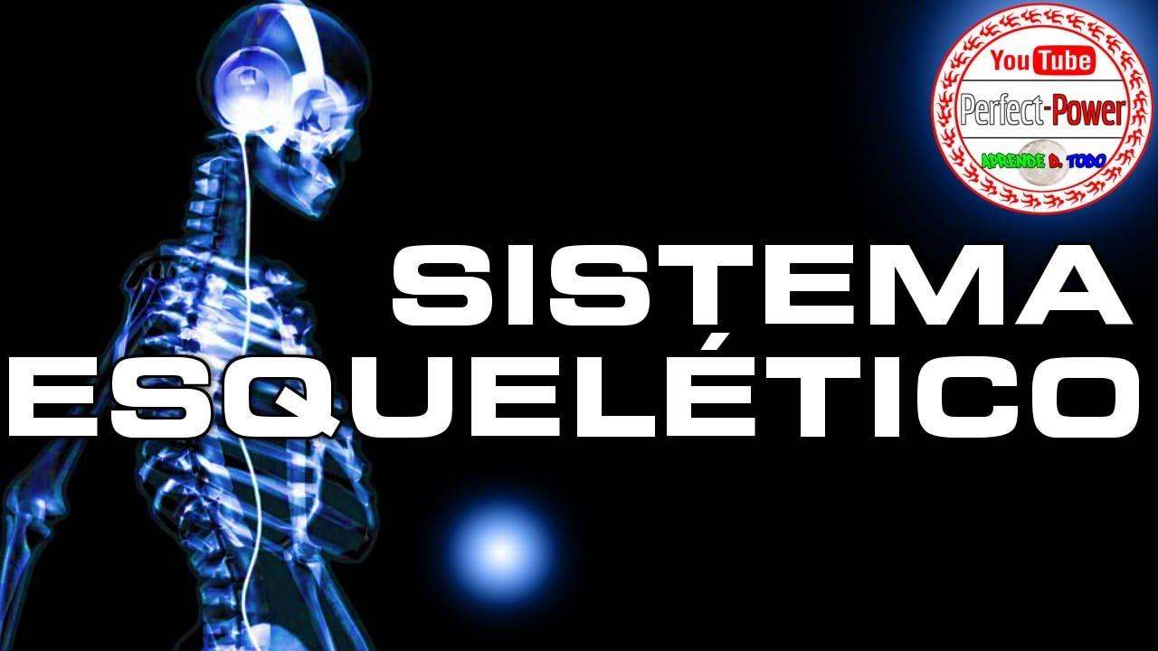 SISTEMA ESQUELÉTICO/ÓSEO |Power Points Listos [PerfectPower ...