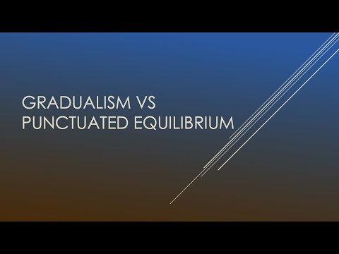 Gradualism vs Punctuated Equilibrium | Biology |