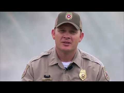 Game Wardens and Facebook