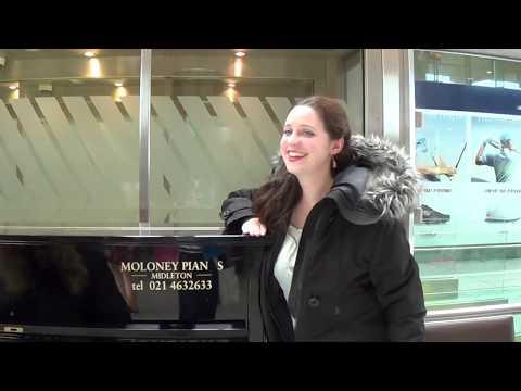 Strange Passengers Hijack The Airport Piano