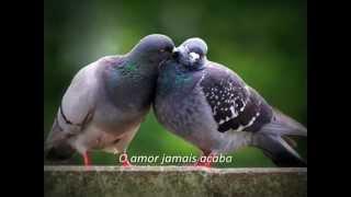 O amor jamais acaba