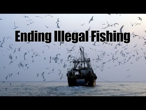 ENDING ILLEGAL FISHING