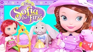 Sofia The First Tea Party Picnic Disney Junior Doll has 40+ Phrases - Play Doh Peppa Pig Toys DCTC