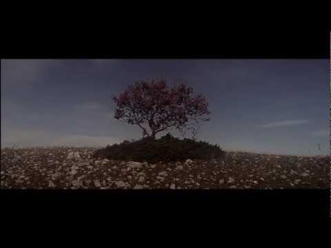 The Verve - Appalachian Springs (2008) HD w/lyrics