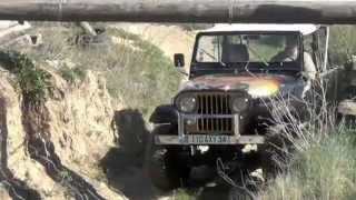 JEEP CJ7 V8 GOLDEN EAGLE