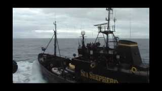 Self-righteous terrorist group Sea Shepherd assaults the research base vessel  in the Southern Ocean