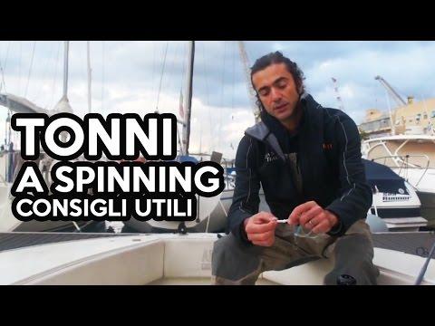 A caccia di Big con la Seppia - Video di pesca Tubertini con Marco Volpi from YouTube · Duration:  39 minutes 10 seconds