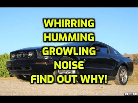 Car and truck makes whirring howling growling noise when accelerating