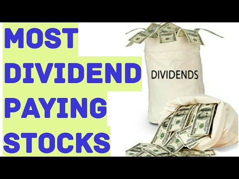 Best company paying stock options