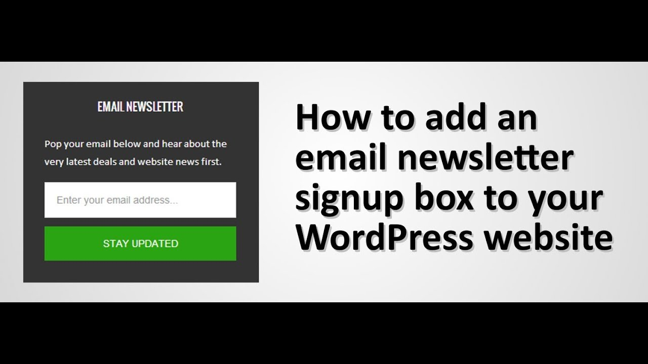 How to add an email newsletter signup area a WordPress website - YouTube
