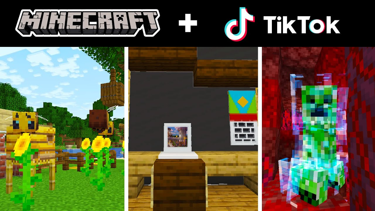Minecraft Tik Tok Compilation 22