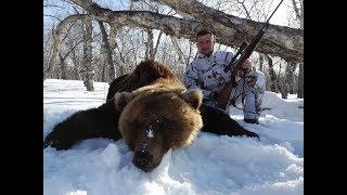 Kamchatka bear hunting / Polowanie na niedźwiedzie Kamczatka (Chasspol.pl)