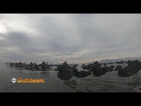 Duck Hunting The Great Salt Lake With Delta Waterfowl