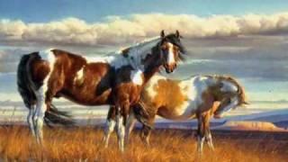 native american indian spirit horses